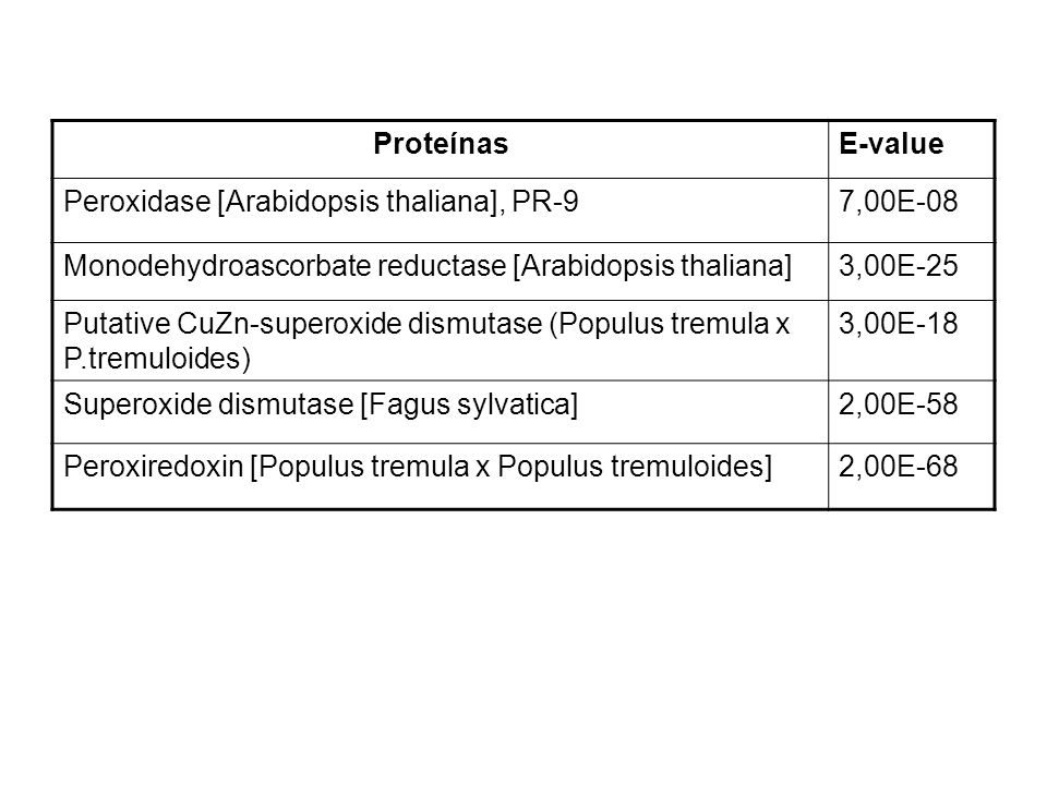Proteínas E-value. Peroxidase [Arabidopsis thaliana], PR-9. 7,00E-08. Monodehydroascorbate reductase [Arabidopsis thaliana]